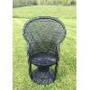 Vintage Black Peacock Chair