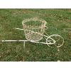 Chippy Pink Wheelbarrow Planter