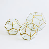 Brass Poly Terrariums