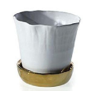 White Pot/Gold Saucer-L