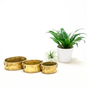 Zephyr Planters - Set of 3