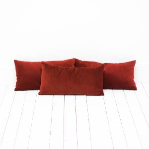 Cranberry Velvet Pillows