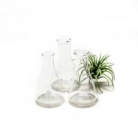 Small Glass Beakers