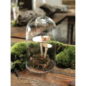 Glass Cloche (Small)