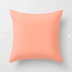 Peach Coral Pillow
