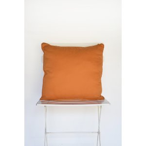 Orange Canvas Pillow