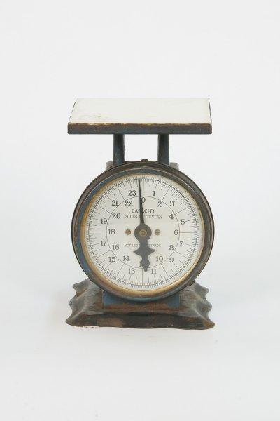 Montgomery Ward Scale