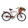 Bicycle Vintage Red/Silver