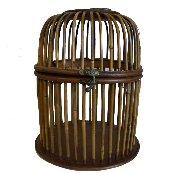 Bamboo Cage