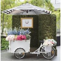 Sub-rental HL Cart w/ Umbrella