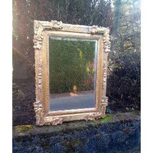 Bryah Gold Mirror