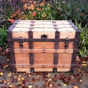 Hayes Trunk