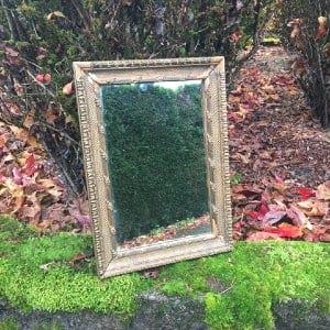 Renata Gold Mirror