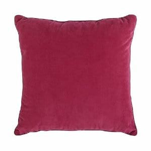 Raspberry Pillow