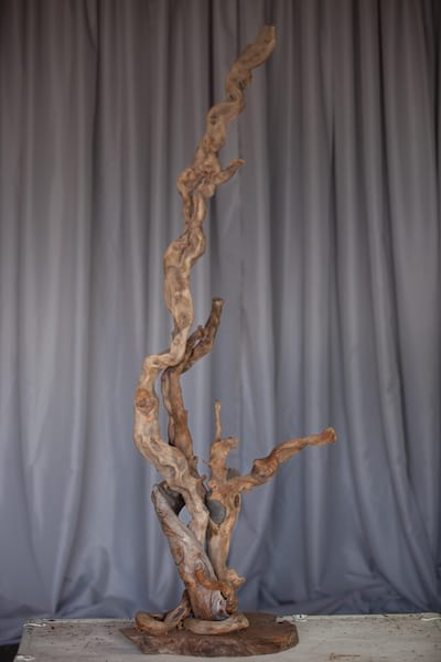 Branch - Driftwood large