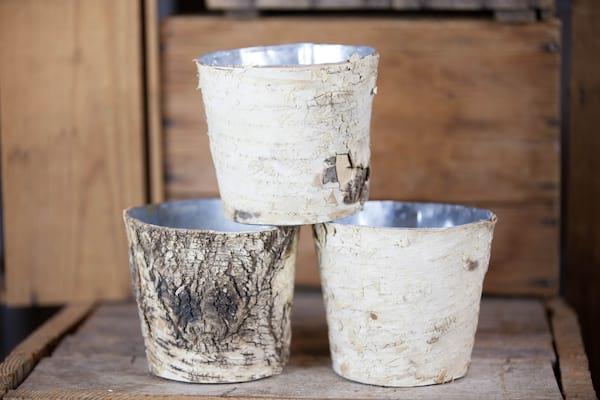 "Bucket - Birch Wrapped Short 5"""