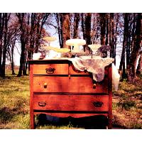 Dresser - Emily