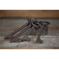 Skeleton Keys - Large
