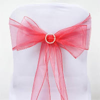 Chair Tie - Coral sheer