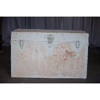 Trunk - White Hinged Lid Large
