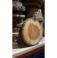 Wood Round - Rough log