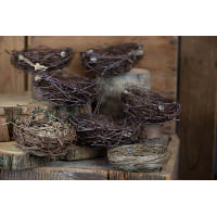 Nest - Bird