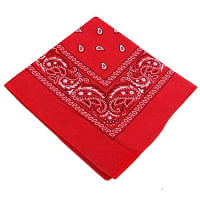 Napkin - Red Bandana