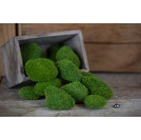 Moss - Faux rock balls