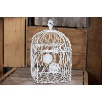 Birdcage - Erin square