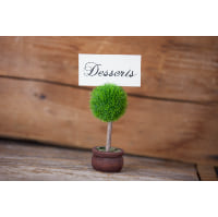 Place Card Holder - Topiary Tree Marker