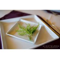 Plate - White Square Dinner