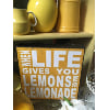 S523 when life gives you lemons