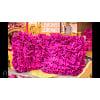 d366 hot pink pillows