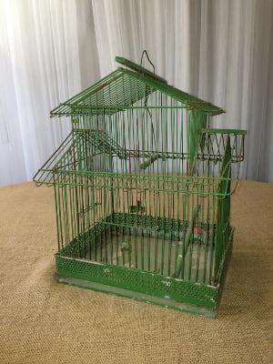 Vintage Green Birdcage