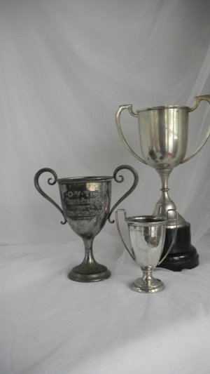 Silver Trophy Cups