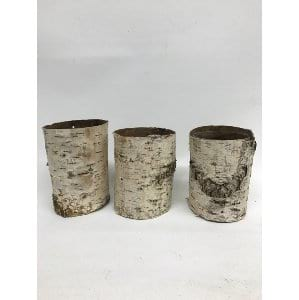 BIRCH CONTAINERS LARGE