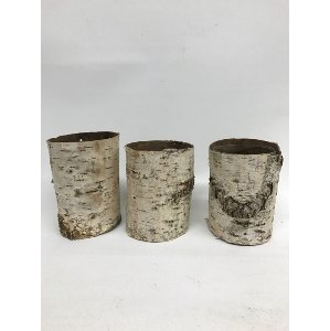 BIRCH CONTAINERS-LG