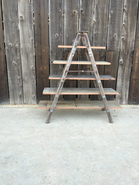 LANCE LADDER WITH PLANKS