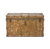Military Green Trunk