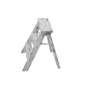 Furtive White Ladder