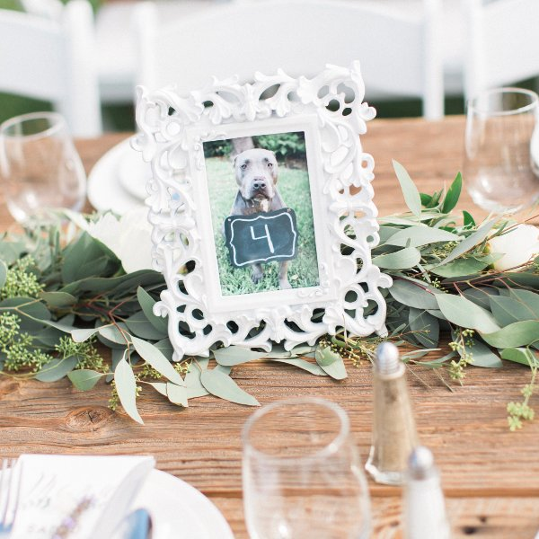 Small White Decorative Frames