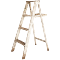 Short Distressed Ladder