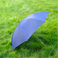 Navy Umbrella