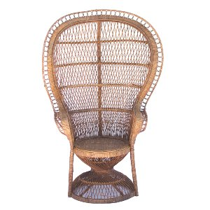 Cassidy Peacock Chair