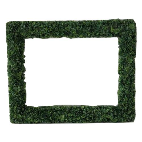 Hedge Frames