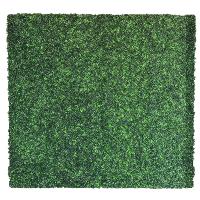 GRASS (8x8)