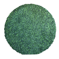 CIRCLE GRASS (8x8)