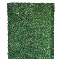 GRASS (6x8)