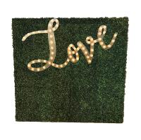 LOVE MARQUEE GRASS wall (8x8)