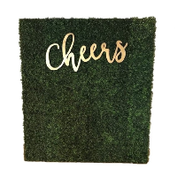 CHEERS GRASS wall (6x8)